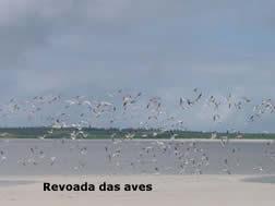 Bragança/Ajuruteua